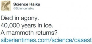 science haiku tweet